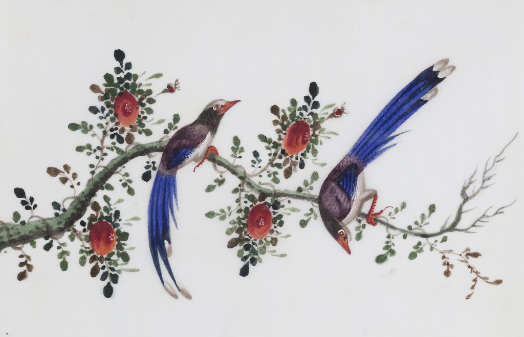 322号 一组十二幅花鸟通草画