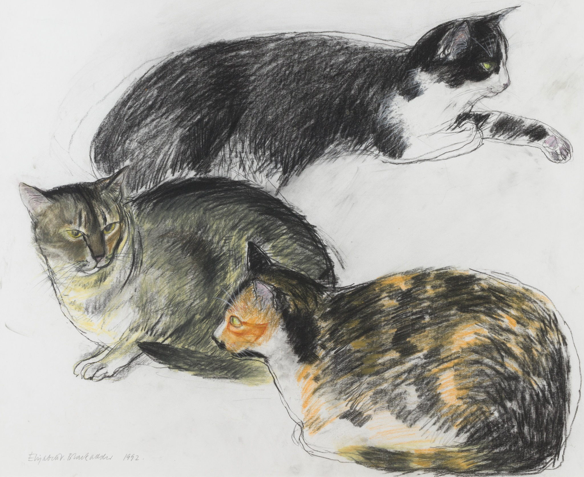 ELIZABETH BLACKADDER O.B.E., R.A., R.S.A., R.S.W., R.G.I., D.LITT (SCOTTISH B.1931) THREE CATS