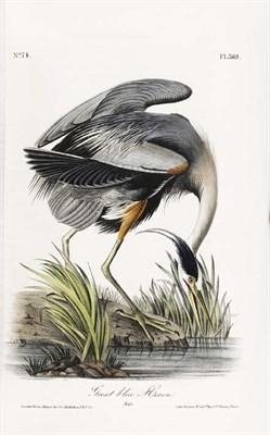 Lot 190 - Audubon, John James