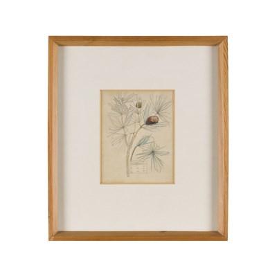 Lot 249-CHARLES RENNIE MACKINTOSH (1868-1928)