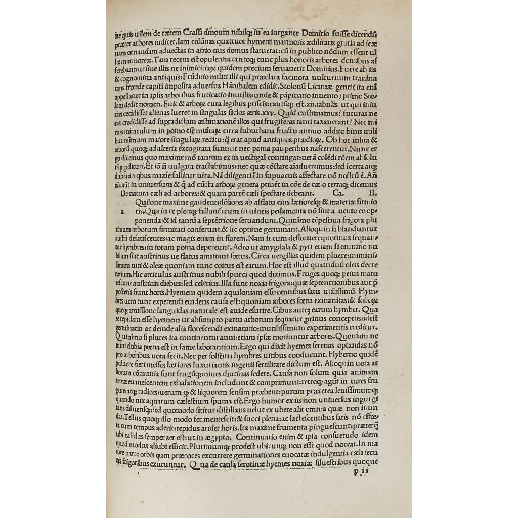 Lot 10-Plinius Secundus, Gaius