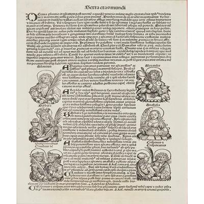 Lot 43 - Nuremberg Chronicle