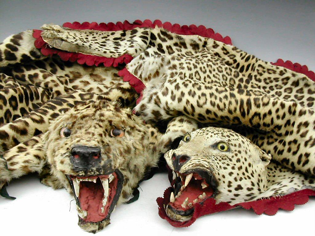Lot 297 Two Leopard Skin Rugs